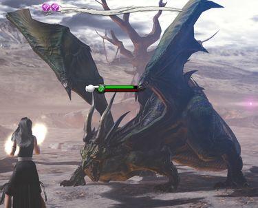 Gale Lizard fight.jpg