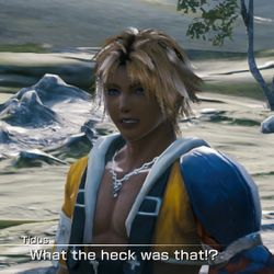 Tidus What Was That.jpg