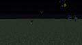 Fireflies at night.png