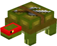 Turtle 3.png