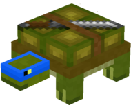 Turtle 4.png