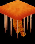 Orange-red jellyfish.png