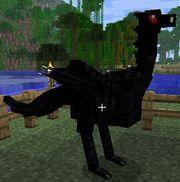 Wyvern ostrich.jpg