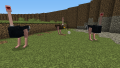 Ostriches and egg.png