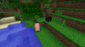 Boar and pig.png