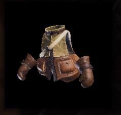 Felyne Leather Vest.JPG