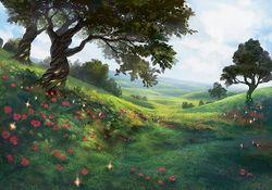 Fields of Summer.jpg