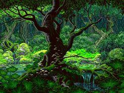 Kristina's Woods.jpg