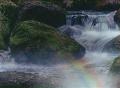 Crop - Vivid Creek.JPG
