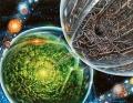 Crucible of Worlds.jpg