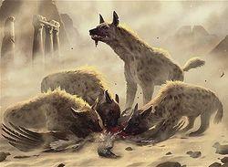 Hyena.jpg