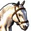 White horse.png