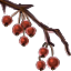 Icons Inventory Misc Plant 02 Red.png