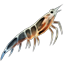 Icons Inventory Fishing Bait 02 Krill.png