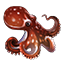 Icons Inventory Fishing Octopus.png