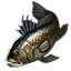 Icons Inventory Fishing Seabass.png