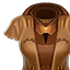 Inventory Body Cloth Professions Tailoring Cotton Lv15.png