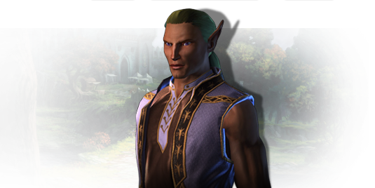 Wood Elf - Official Neverwinter Wiki