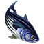 Icons Inventory Fishing Skipjacktuna.png