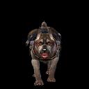 Companion Dog Tank 04.png