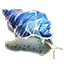 Icons Inventory Fishing Nerite.png
