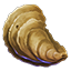 Icons Inventory Fishing Oyster.png
