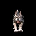 Companion Dog Tank 01.png