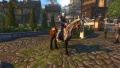 Appaloosa Horse.jpg