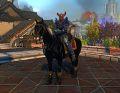 NW Black Stallion.jpg
