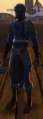 NW Wild Noble Set Male Front.png