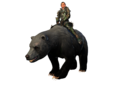 Preview Large Mount Bear Rare Silverback.png
