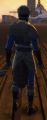 NW Wild Noble Set Male Back.png