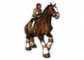 Preview Large Mount Horse Uncommon Clydesdale 02.png