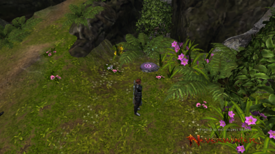 Sharander Scrying Stone Location 1 Stone.png