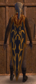 NW Cloak of the Waterdhavian Open Lords.png