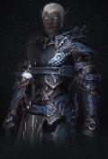 Mercenary (previous) - Official Neverwinter Wiki