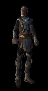 Controller - Official Neverwinter Wiki