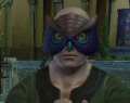 NW Owl Mask.png