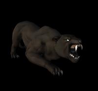 Panther 1.png