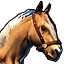 Icons Inventory Mount Horse Palomino.png