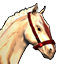 Icons Inventory Mount Horse Sunite.png