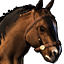 Icons Inventory Mount Clydesdale Buckskin.png