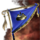 Icon Inventory Artifacts TacticianBanner.png