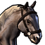 Icons Inventory Mount Horse Grey.png