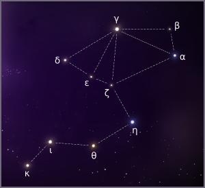 Stars of Oxalis