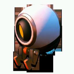 Robotic Companion