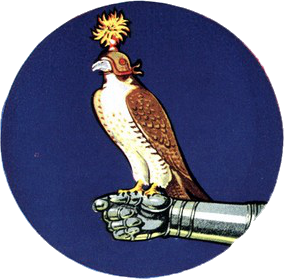 Fighting Falcon Squadron