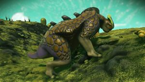 Luwyandhin Antos fauna 1.jpg