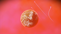 No Man's Sky 20180707011743.png
