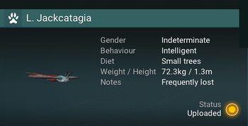 L. Jackcatagia